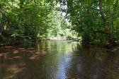 Four Mills Nature Reserve, Ambler
